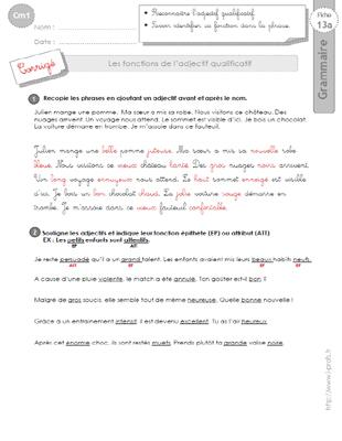 cm1: Exercices Les fonction de l'adjectif qualificatif