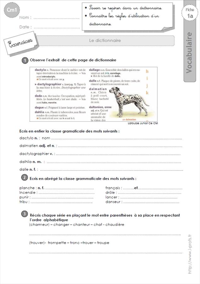 Cm1 Vocabulaire Exercices Lecon Et Evaluation Tout Le Programme De Cm1