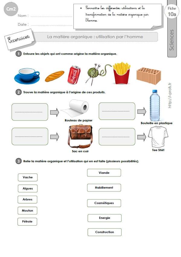 Cm2 Exercices Sur La Matiere Organique Utilisation Par L Homme